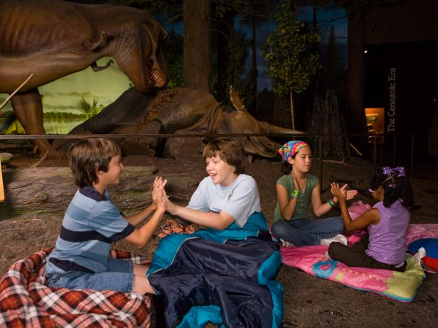 Sleepover, Milwaukee Public Museum