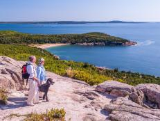 Pet-Friendly Acadia National Park