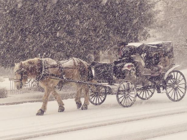 Carriage Rides in the Snow in Aspen, Colorado