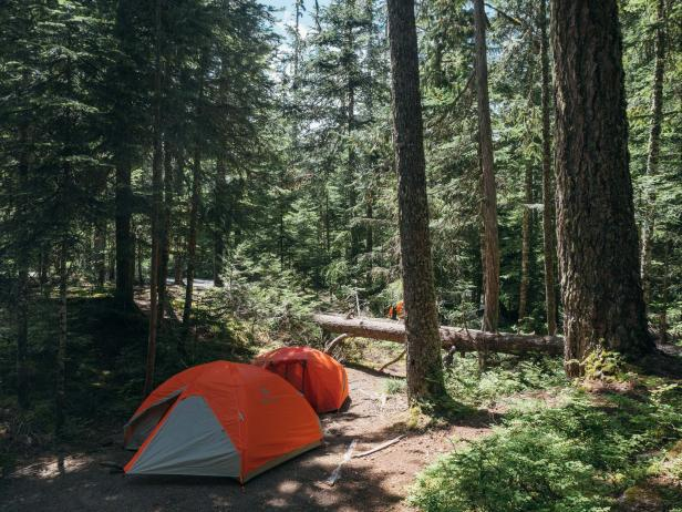 Camping in Mt. Rainier National Park
