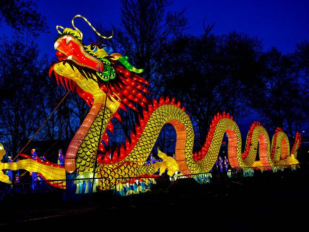 A larger-than-life LED installation from the exhibition China Lights: Boerner Brighter Than Ever