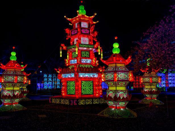 A nighttime shot of the China Nights exhibition at Boerner Botanical Gardens
