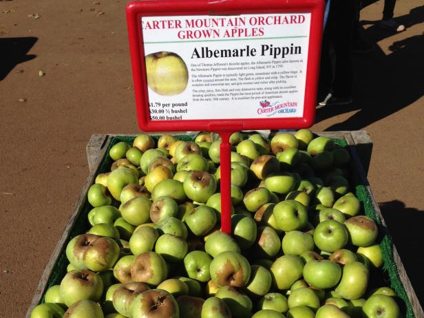 Albemarle Pippin apples