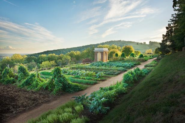 The Vegetable Garden at Monticello