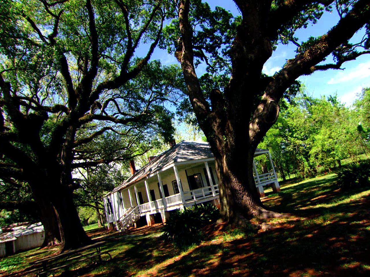 Magnolia Plantation Ghost Adventures Shows