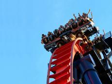 Rollercoaster SheiKra at Busch Gardens Tampa Bay Florida