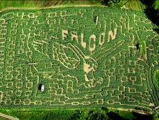 The Great Vermont Corn Maze