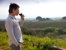 Take a wine tasting tour of Croatia's wonderful wine country.