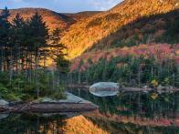 Fall Foliage Photography Tips