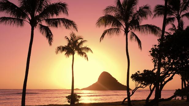 Top Things To Do On Oahu Hawaii Travel Channel Hawaii - 10 things to see and do in honolulu