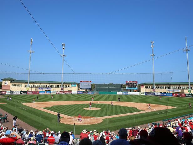 st louis cardinals, mlb, baseball, spring training, roger dean stadium, florida