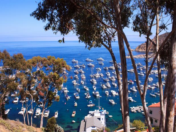 Catalina Island, sailing, boats, Los Angeles, California