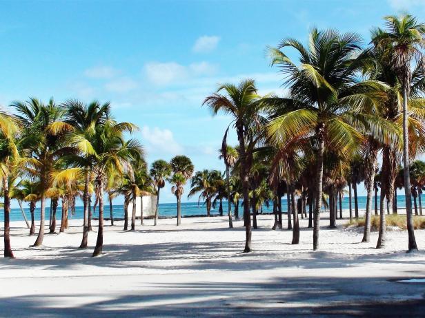 Crandon Park, Key Biscayne, Florida