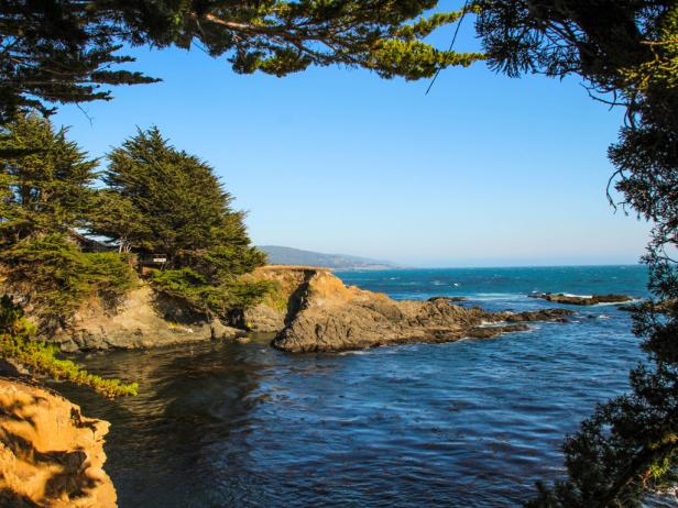 California Coast in Sea Ranch