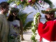 Get Hitched on Lahaina Beach