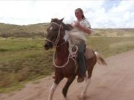 Horseback-Riding in Aruba