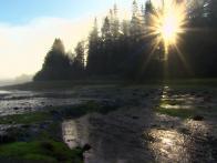 5 Majestic American Landscapes