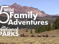 5 Wild Family Adventures