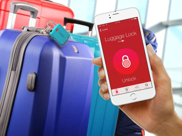 LockSmart Travel Safety System