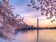 Let Travel Channel be your guide as you discover the statues, monuments and memorials that make up Washington D.C.'s iconic national parks.