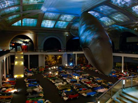 Spend a Night at a Museum