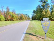 TravelChannel.com takes you on a trip to Mississippi to see nature trails, battlefields and more in the state's national parks.