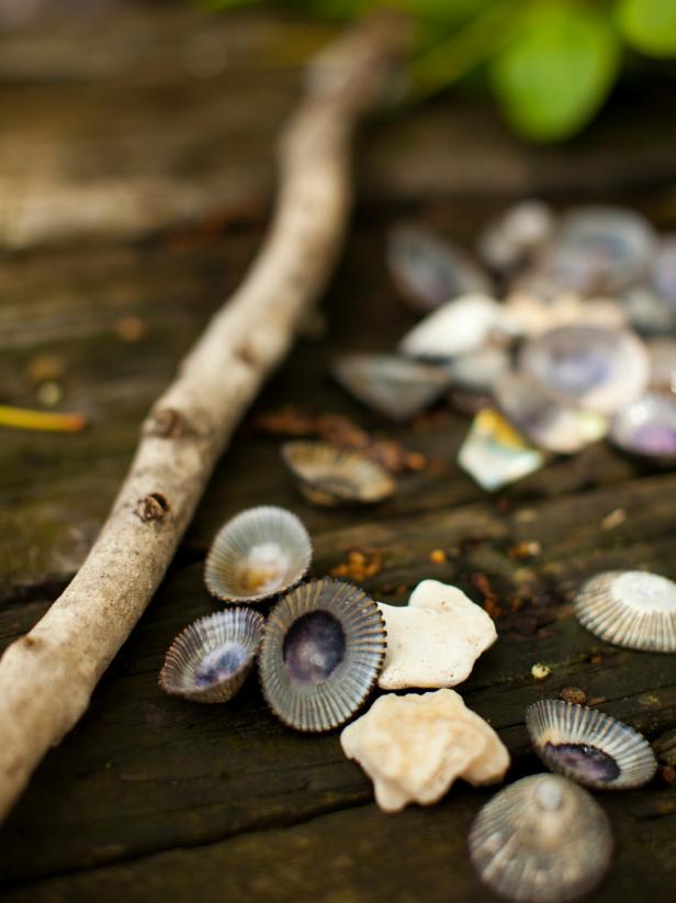Seashells on Molokai, Hawaii