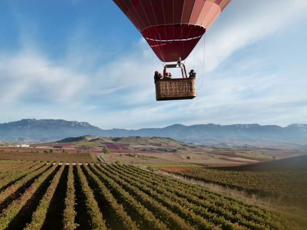 A hot air balloon drifts over the vineyards in Rioja, Spain