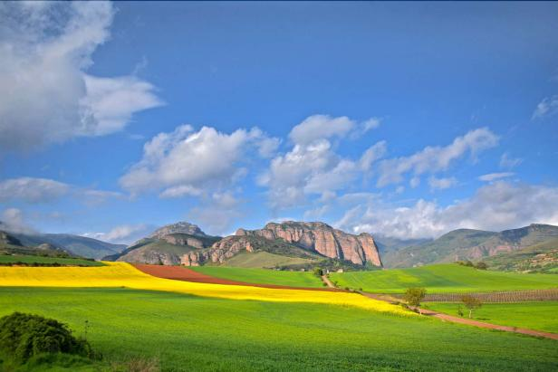 The landscapes of Rioja, Spain