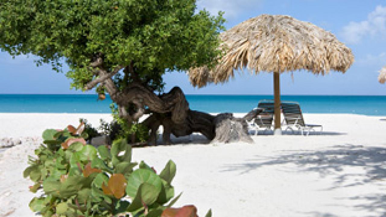 Palm Beach Aruba Travel Channel