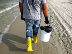 It will take thousands of volunteers and countless hours to clean up after the disastrous BP oil spill in the Gulf Region. Here are some ways you can help.