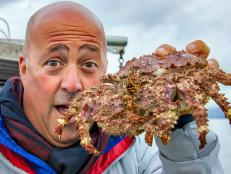 Andrew Zimmern with a box crab in Vancouver