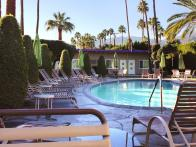 What You Should Know About Palm Springs