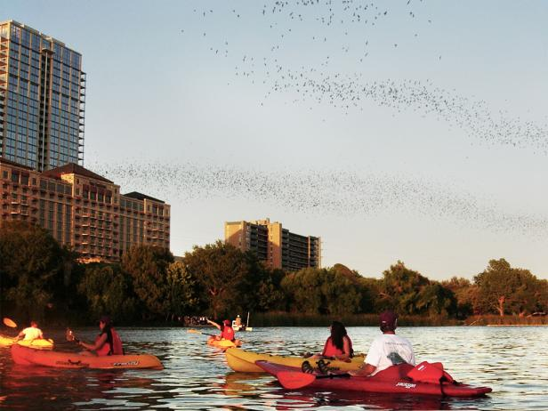 congress ave bridge, kayaking, bats, austin, texas