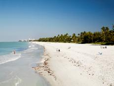 <p>Take advantage of the Sunshine State's best beaches.</p>