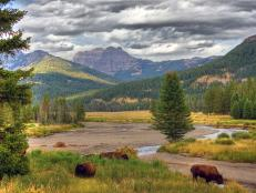 Majestic Mountains, Yellowstone National Park, Wyoming
