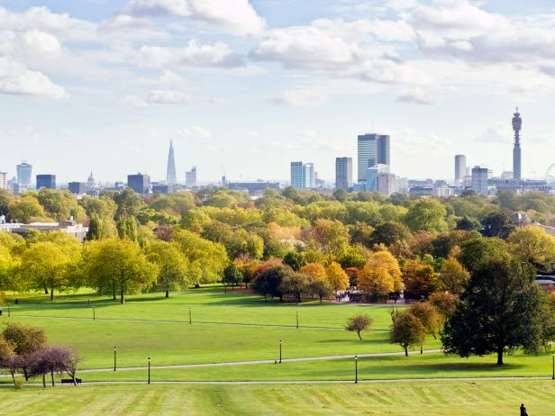 primrose hill, skyline, london