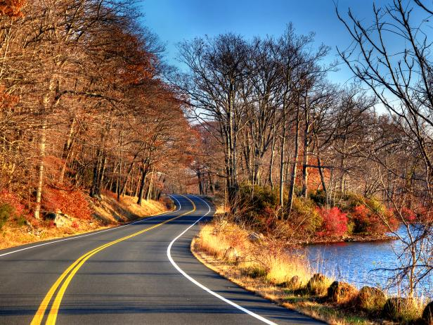 car on road with lake on right and colored fall foliage