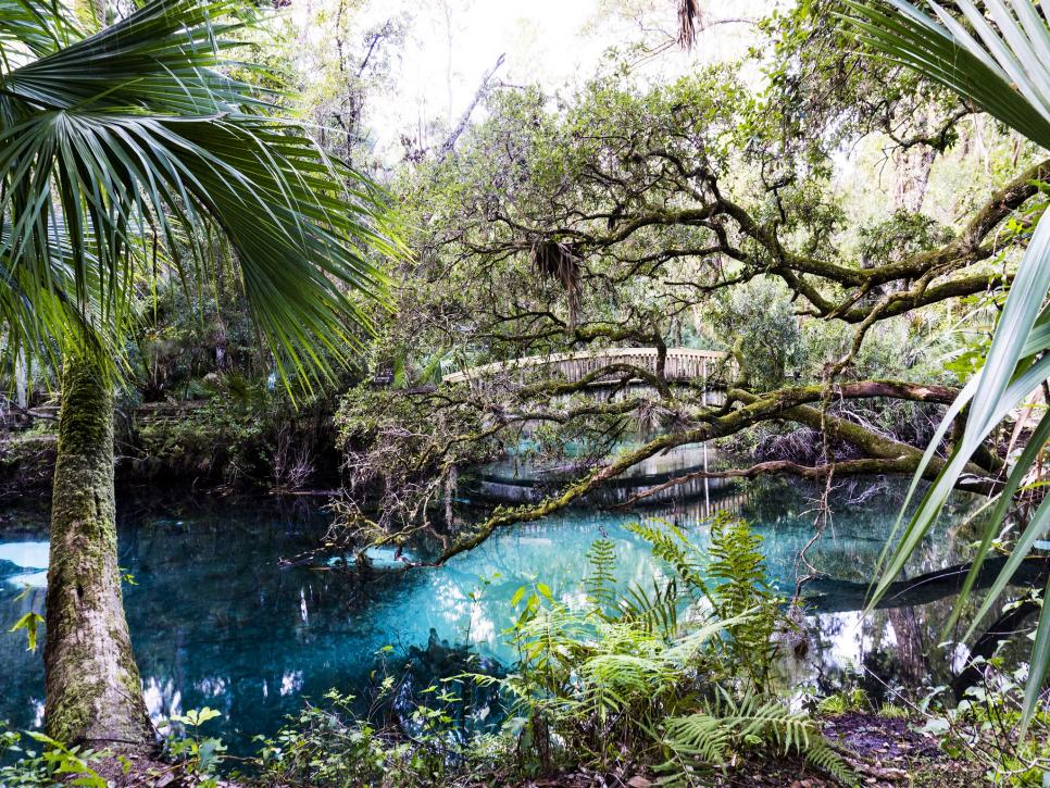10 Natural Wonders To Add To Your Florida Bucket List Travel Channel