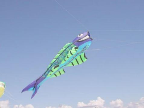 Fly High at the Kitty Hawk Kite Festival